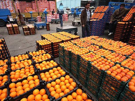 عرضه پرتقال خارجی مصری و ترکیهای کیلویی ۳۹۰۰ تومان/ مردم گرانفروشان را معرفی کنند