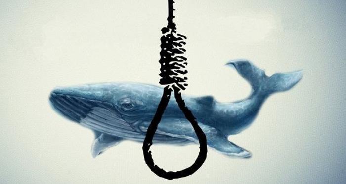 نهنگ آبی عامل خودکشی دو دختر اصفهانی نبوده است/ پرونده حادثه خودکشی تشکیل شده است