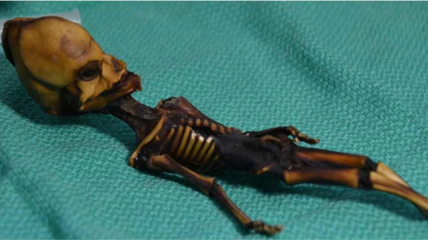 جزئیاتی درباره اسکلت کوچک کشف شده در شیلی