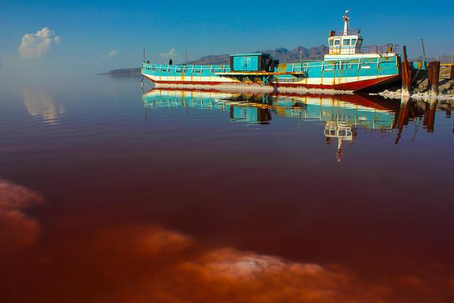 هنوز آرتمیا زنده در دریاچه ارومیه وجود ندارد