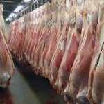 تکذیب توقف محموله گوشت وارداتی/ واردات گوشت قرمز به کشور از مرز ۷۲ هزار تن گذشت