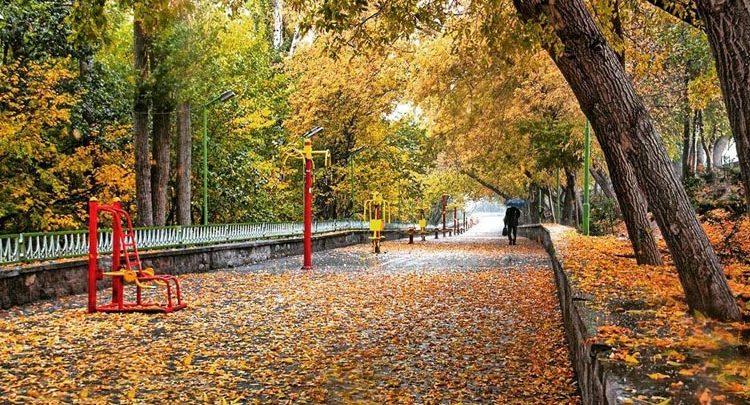 اجرای طرح پاییزی در تبریز/ خیابانهایی با برگ های زرد و نارنجی