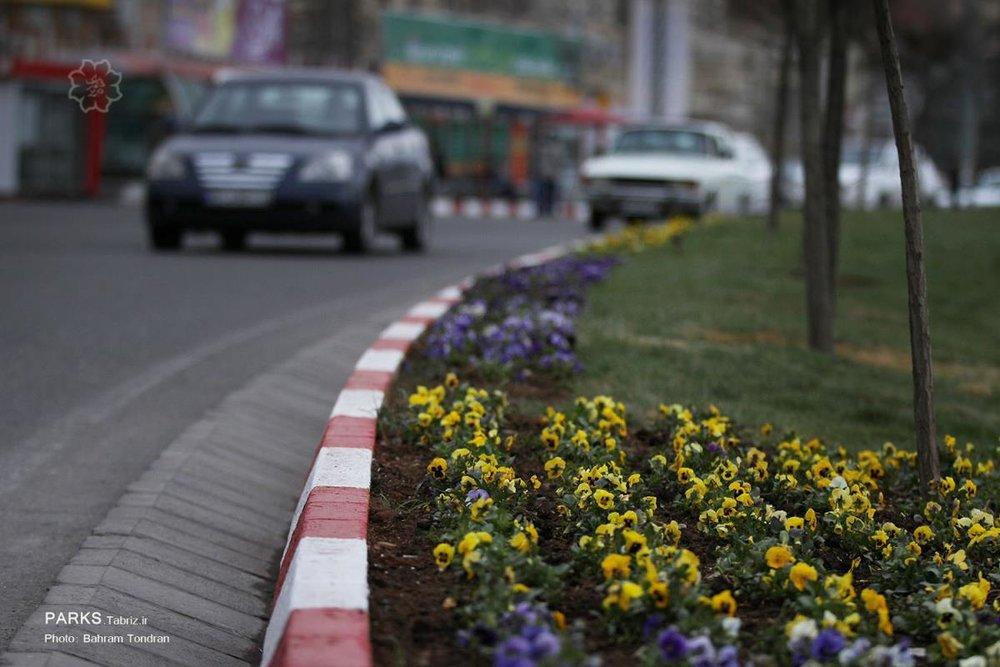 """اجرای طرح """"استقبال از بهار"""""""