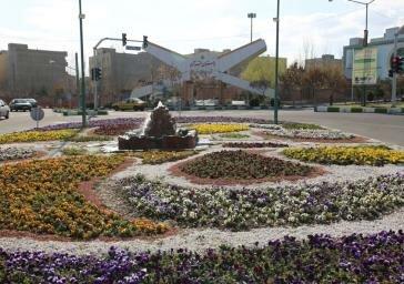 کاشت گل های فصلی در بوستان ها ، معابر و میادین منطقه ۷
