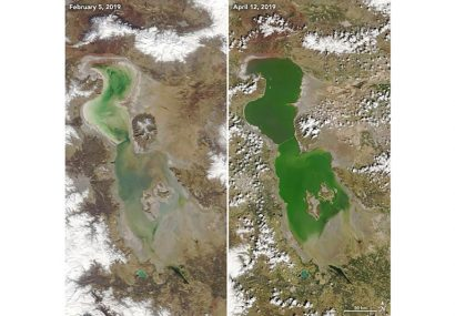 دریاچه ارومیه دوباره جان گرفت