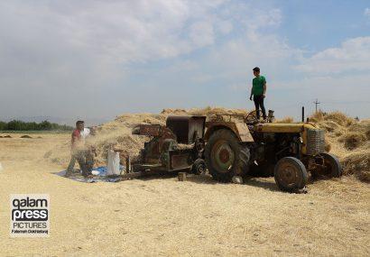 لزوم توانمندسازی روستائیان در راستای جلوگیری از مهاجرت