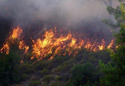 افزایش تعداد آتشسوزی در مراتع و جنگلهای منطقه ارسباران