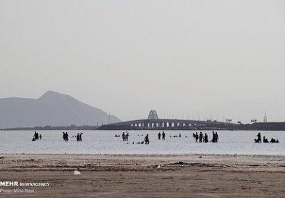 نقش ویژه جوامع محلی در احیای دریاچه ارومیه / دریاچه ارومیه به زندگی بازگشت