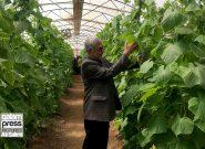 رونق تولید و گردشگری در سواحل اورمیه