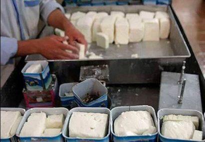 خوشمزهترین پنیر دنیا در انحصار لیقوانیها