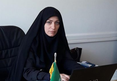 آغاز طرح توسعه مشاغل خانگی با هدف توانمندسازی اقتصادی زنان سرپرست خانوار استان