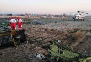 سقوط هواپیما تروریستی نبود/ علت سقوط نقص موتور بود