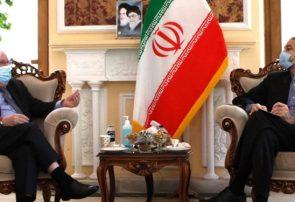 امیرعبدالهیان: ایران برای تحقق صلح در یمن از هیچ کوششی دریغ نخواهد کرد