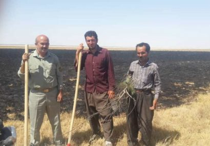 مهار آتش سوزی در تالاب «قره قشلاق» بناب